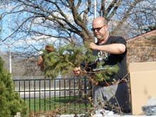 Photos from Arbor Day 3